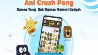 Game Ringan, Ani Crush Pang