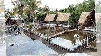 Wisata Resto Kolam Susu, Wisata Kota Palembang