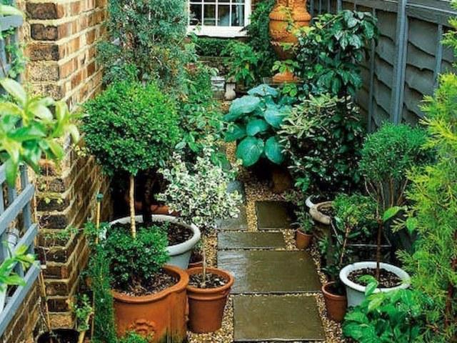 desain taman minimalis, desain taman di pekarangan rumah
