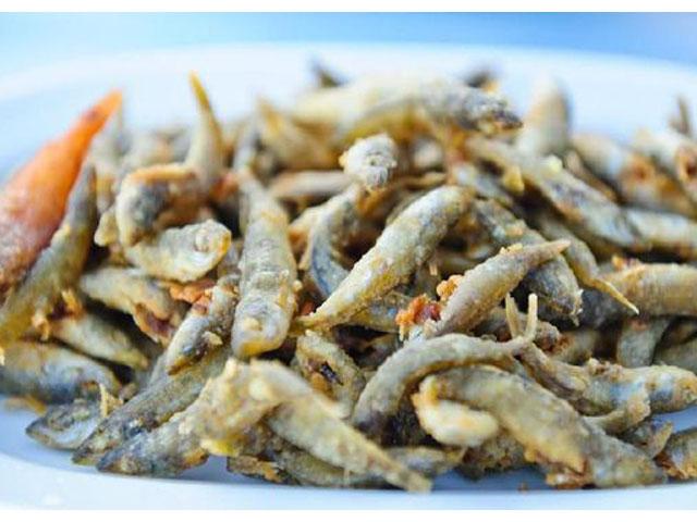 Beragam Manfaat Ikan Teri untuk Kesehatan, khasiat ikan teri