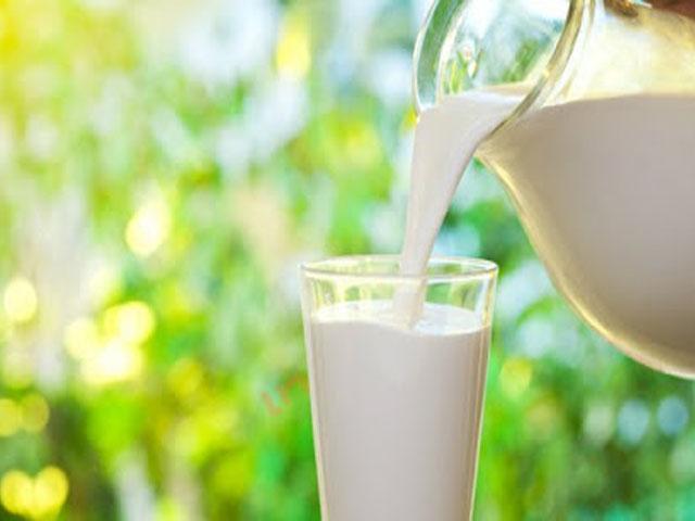 waktu terbaik minum susu