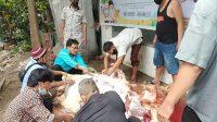 Gubernur Sumsel Bantu Satu Sapi Kepada FPPS Sumsel