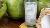 manfaat mengonsumsi air kelapa, mafaat air kelapa muda